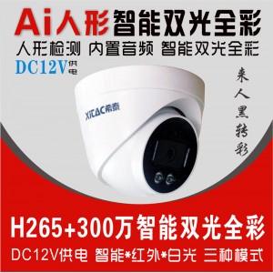 希泰XT-S302G 300万智能双光音频网络高清监控